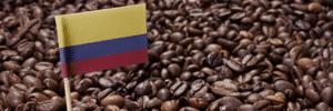 Premium Colombian Beans