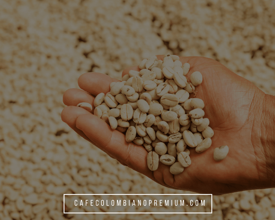 colombian-coffee-green-coffee-beans-raw